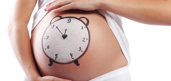 envelhecimento e fertilidade