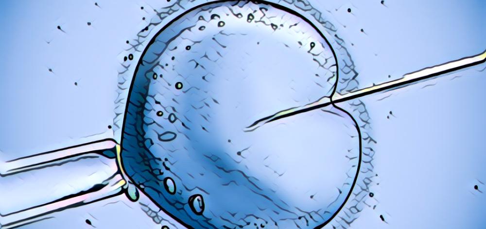 passo a passo da fertilização in vitro
