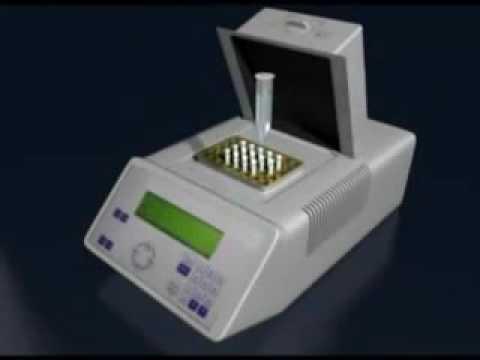 Diagnóstico Pré Implantacional dos Embriões